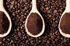 越南经加工咖啡出口呈现新亮点