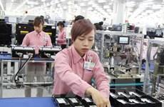 11月份越南全国新成立企业雇佣劳动力92300人