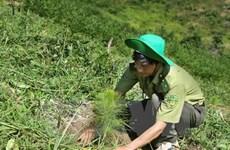 越南努力实现可持续发展目标