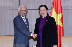 越南国会副主席丛氏放会见联合国驻越协调员