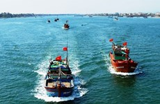 """消除越南渔业""""黄牌""""警告:打造负责任渔业的良机"""