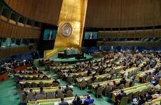 越南首次当选联合国国际贸易法委员会成员