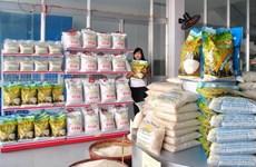 越南朔庄香米—世界三大最好大米获国内外市场的青睐