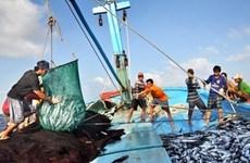 茶荣省努力提升海洋资源开发利用效益