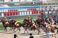 将多功能娱乐综合体——赛马场项目纳入河内市规划