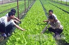 平顺省建设应对气候变化的智慧农业模式