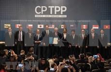 《跨太平洋伙伴关系全面进展协定》正式生效