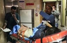 越南游客在埃及金字塔附近遇袭事件:9名游客启程回国