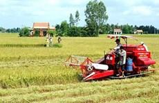 隆安省努力将边境地区发展成为活跃经济区