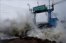 """热带风暴""""帕布""""登陆泰国南部  居民被迫撤离避难"""
