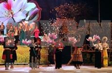 2019年奠边省羊蹄甲花节将于3月举行