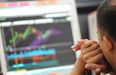 2018年12月份越南证券托管中心向206名外国投资者发放证券交易代码