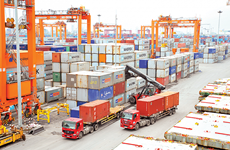 2018年越南出口行业亮点纷呈