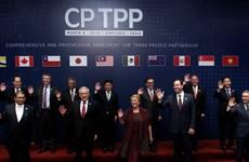 越南加入CPTPP后要求工会组织改进其工作