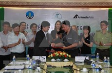 亚洲动物基金为得乐省大象保护工作援助6万美元