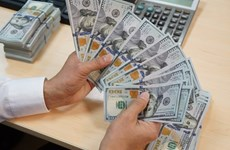 16日越盾兑美元中心汇率上涨7越盾