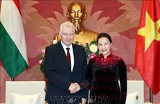 国会主席阮氏金银会见匈牙利议会副议长亚考伯·伊什特万