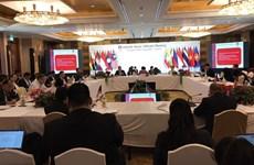 东盟高官会检查东盟外长非正式会议的筹备工作情况