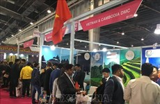 越南多家旅游企业参加印度旅游展