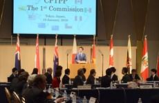CPTPP委员会第一次会议正式召开