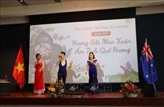 旅居海外越南侨胞喜迎2019年新春