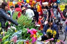 在河内中心感受昔日春节氛围