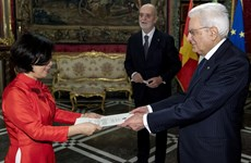 越南优先发展同意大利的全面合作关系