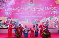 越南驻多国大使馆纷纷举行迎春活动