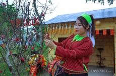 谅山和乂安等省举办多彩活动迎接2019年春节