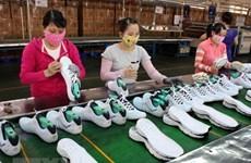 南非是越南在非洲地区的最大贸易伙伴