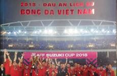 """""""2018年-越南足球的烙印""""图书问世"""