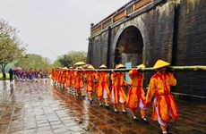 越南多地举行2019年迎春活动