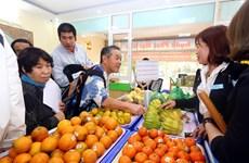 日本企业寻找对越南农产品投资合作商机