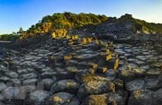 富安省努力提升国际游客到访量