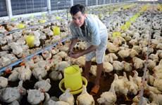 为畜牧业发展注入动力