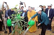 国会主席阮氏金银出席和平省植树造林出征仪式