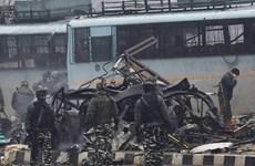 越南外长就印度恐怖袭击事件向印度外长致慰问电