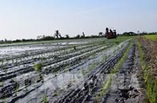 越南努力加快增长模式转型和新农村建设步伐