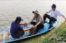 农业与农村发展部部长阮春强:越南是查鱼产业的潜在市场