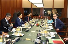 越南与德国加强在多个领域的合作