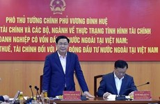 王廷惠:向外国投资者提供优惠但需保障国家财政收入