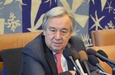 联合国秘书长古特雷斯积极评价朝美领导人河内会晤