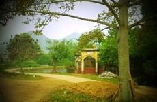 探访历史文化底蕴深厚的越南东山古村