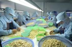 国内企业出口继续是越南贸易活动中的亮点