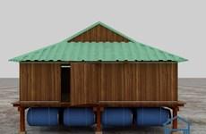 广南:绿色气候基金继续援越建设防台风屋和种植红树林