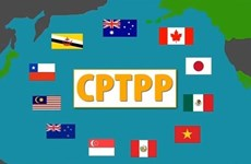 越南《全面与进步跨太平洋伙伴关系协定网站》正式上线