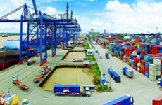 各项贸易协定为2019年越南出口带来新机遇
