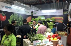 近200家企业参加2019越南国际果蔬及花卉园艺展