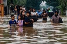 印尼东部巴布亚省暴雨引发洪灾已致40多人死亡