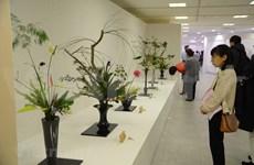 越南首次参加日本关西地区花道展览会